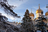 Golden domes of Orthodox churches, Russian Federation, Moscow Kremlin — Stock Photo