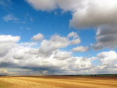 Summer landscape. Mown wheat field and a beautiful sky — Stock Photo