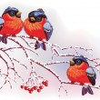 Vector de stock : Birds on branches