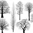 Collection of trees — Stockvektor