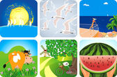 Summer collection icons — Stock Vector