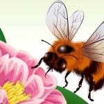 mel abelha — Vetorial Stock
