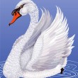 White swan - Stock Vector