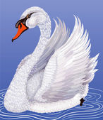 Cisne blanco — Vector de stock