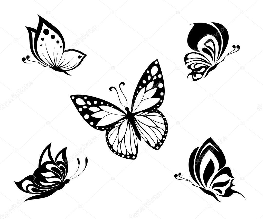 Черно белые цветы картинки 7
