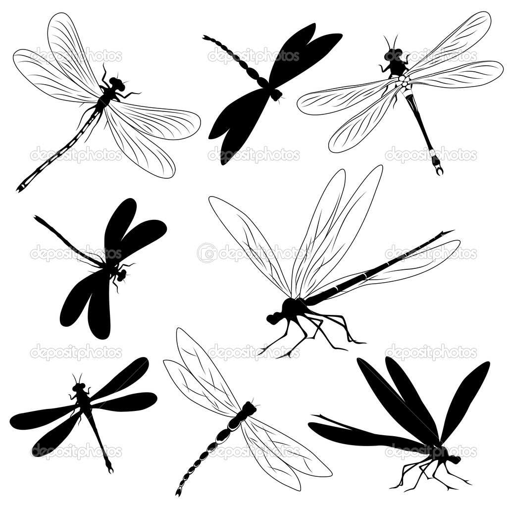 Set of silhouettes of dragonflies, tattoo — Vector by MariStep