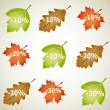 Stock Vector: Autumn discounts