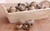 Macro view of walnut — Stock Photo