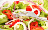 Healthy Fresh Salad — Stock Photo