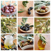 Olives and Olive Oil collage — Stock Photo