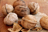 Macro view of walnut — 图库照片