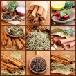 Collage with Spices — Stock Photo #5147998