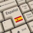 Spanish key — Stock Photo #5118856