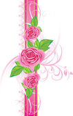 Pink roses with ornament on the decorative ribbon — Stock Vector
