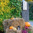 Halloween outdoor decoration — Stock Photo