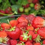 Sweet strawberry fruit — Stock Photo #4092545