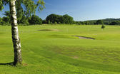 Swedish golf course landscape — Stock Photo