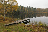 Rainy day lake landscape — Stock Photo