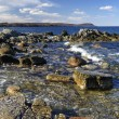 Beautiful Swedish rocky coast — Stock Photo #5309729