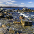 Beautiful Swedish rocky coast — Stock Photo