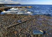 釣りのための春の時間 — ストック写真