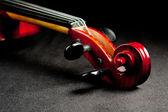 Violing scroll on dark velvet background — Stock Photo