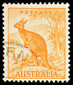 Australia Kangaroo Postage Stamp — Stock Photo