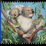 Australia Postage Stamp — Stock Photo #4335627