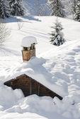 Cuando llega el invierno — Foto de Stock
