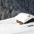 Chalet in the winter — Stock Photo