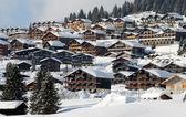 在阿尔卑斯山站 — 图库照片