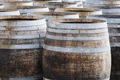 Wine manufacturing — Stock Photo