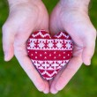 Man hands with red knitted heart - ストック写真