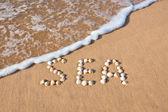 """Word """"sea"""" shell written on beach sand — Stock Photo"""