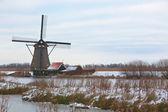 Windmills in Kinderdijk at winter — Stock Photo