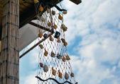 Decoration shell net — Stock Photo