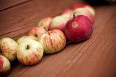 Garden apples — Stock Photo