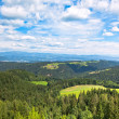 Summer Alps Landscape - Stock Photo
