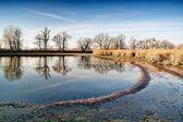 Herbstliche landschaft mit teich — Stockfoto