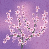 Abstraktní květinové ilustrace — Stock vektor