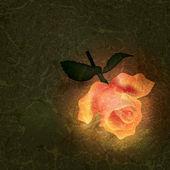 抽象的な花のイラスト — ストックベクタ