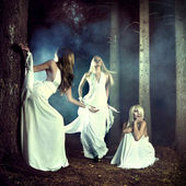 Three nymphs in the forest — Stock Photo