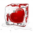 Frozen heart — Stock Vector