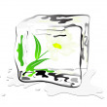 Frozen daisy — Stock Vector #4731629
