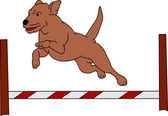 Dog agility — Stock Vector