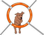 Dog agility — Stock Vector