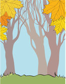 Background with autumn elements — Stock Photo