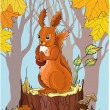Stock Vector: Squirrel with acorn in autumn forest