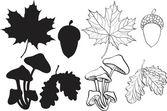 Conjunto de plantas otoño silueta — Vector de stock