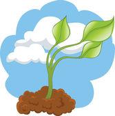 Planta verde — Vector de stock